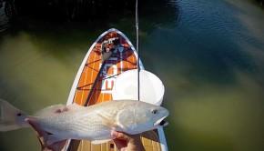 SUP Everglades Redfish
