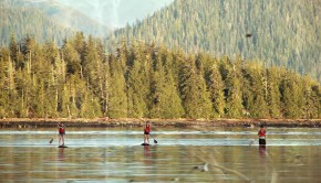 STAND - a SUP adventure through the Great Bear Rainforest