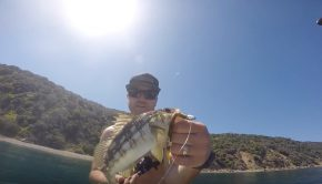 SUP fishing Catalina Island SUP world