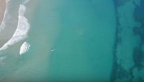 Sharks Approach Surfers!!   DJI Mavic Pro   Incredible 4K Drone Footage   Fort Pierce Inlet