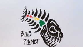 The True Story behind the Blue Planet Fish Logo