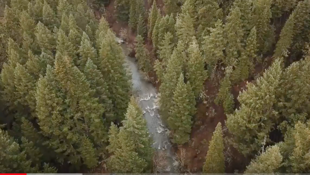 Hala Daze Episode 1: Butte Falls
