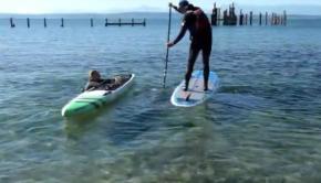 6 SUP Rescue Techniques