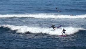 Foil Surfing Ho'okipa - Kai Lenny