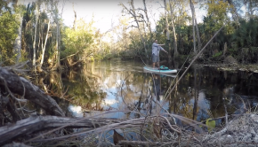 WEKIVA SPRINGS SUP ADVENTURE