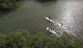 2017 BIC SUP Paddle Range
