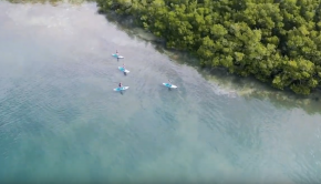 Stand up paddle Guadeloupe - Tom Paddle Evasion