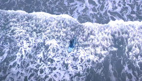 alice arutkin surfing