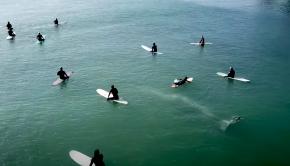whale swims beneath surfers in california bay